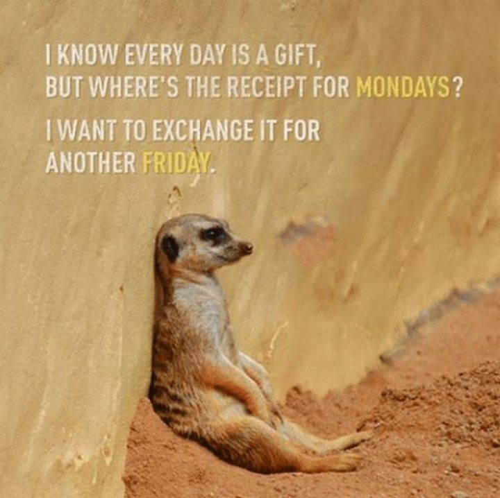 "47 Friday Quotes - ""I know every day is a gift, but where's the receipt for Mondays? I want to exchange it for another Friday."" - Anonymous"