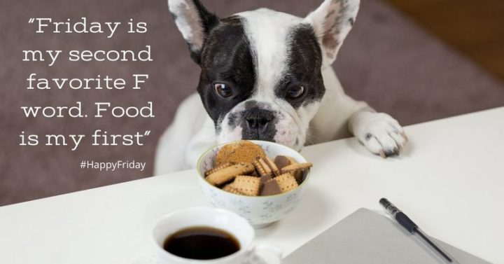 "47 Friday Quotes - ""Friday is my second favorite F word. Food is my first"" - Anonymous"