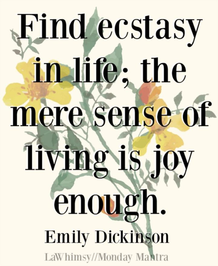 "53 Happy Quotes - ""Find ecstasy in life; The mere sense of living is joy enough."" - Emily Dickinson"