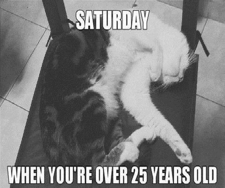 """101 Saturday Memes - """"Saturday when you're over 25 years old."""""""