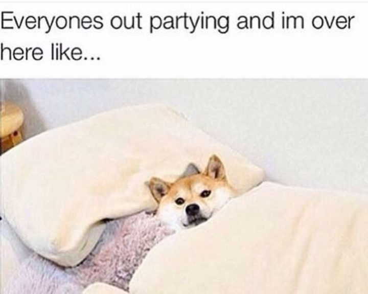 """101 Saturday Memes - """"Everyones out partying and I'm over here like..."""""""