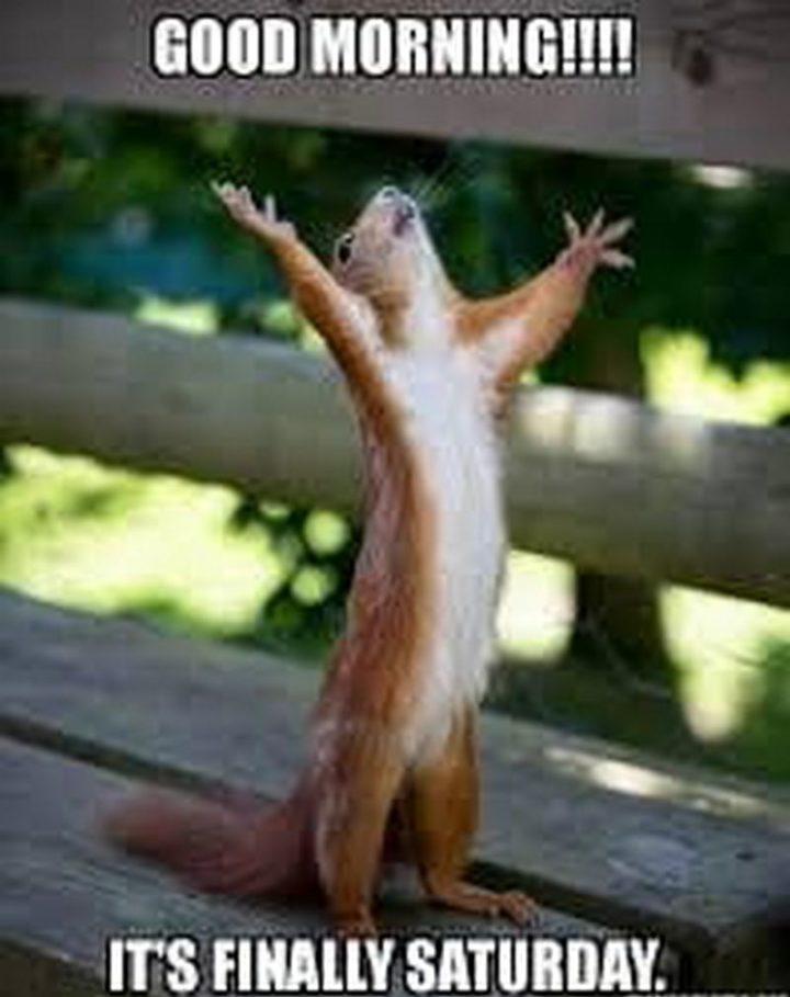 "101 Saturday Memes - ""Good morning!!!! It's finally Saturday."""