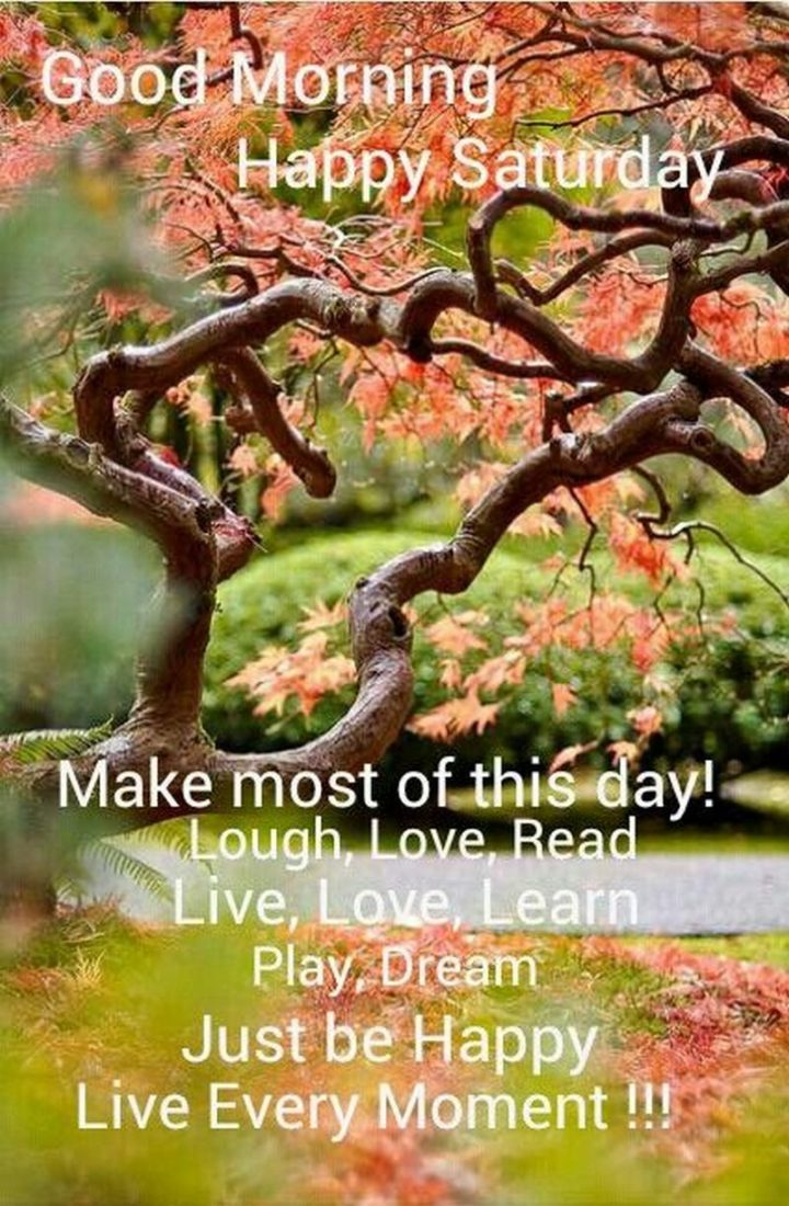 """101 Saturday Memes - """"Good morning. Happy Saturday. Make most of this day! Laugh, love, read, live, love, learn, play, dream. Just be happy. Live every moment!!!"""""""