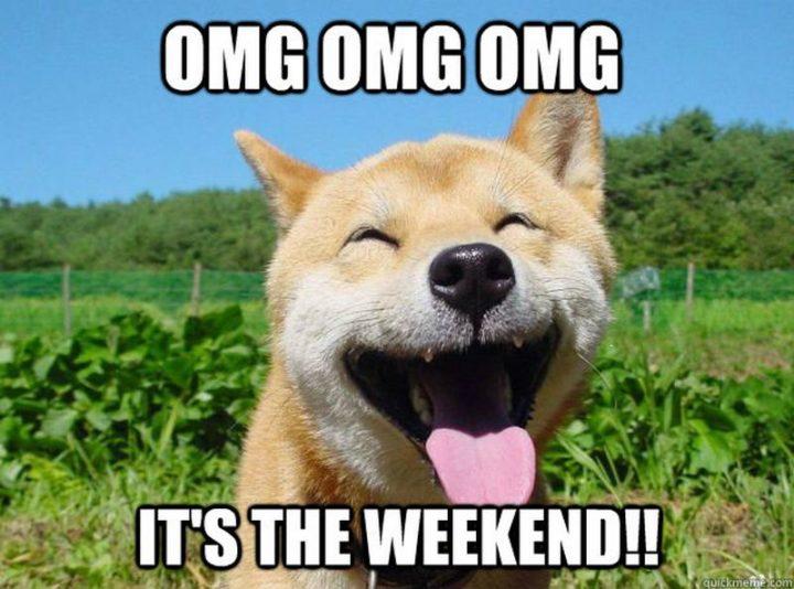 """101 Saturday Memes - """"OMG OMG OMG It's the weekend!!"""""""