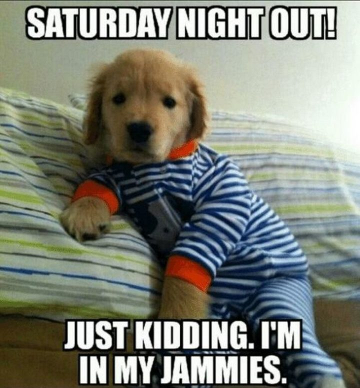 """101 Saturday Memes - """"Saturday night out! Just kidding. I'm in my jammies."""""""