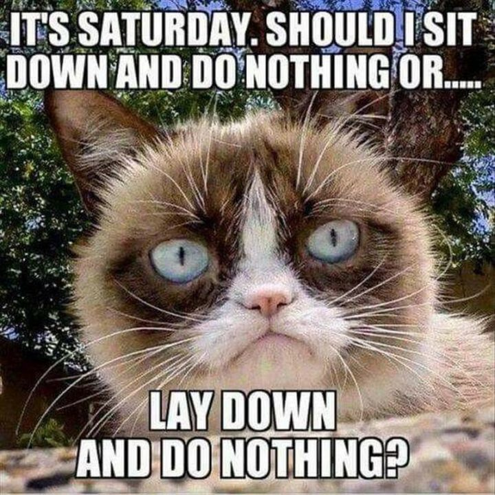 """101 Saturday Memes - """"It's Saturday. Should I sit down and do nothing or...Lay down and do nothing?"""""""