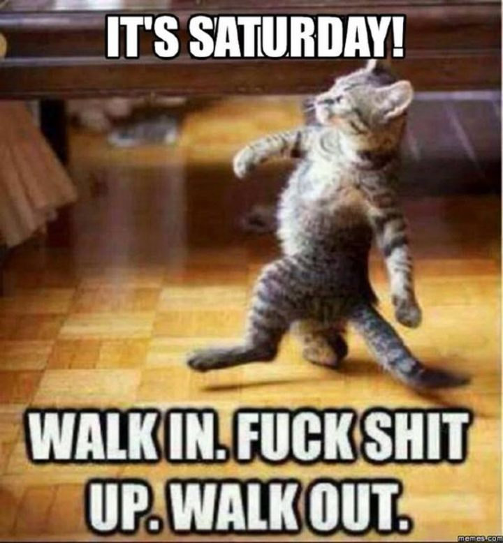 """101 Saturday Memes - """"It's Saturday! Walk-in. [censored] up. Walk-out."""""""