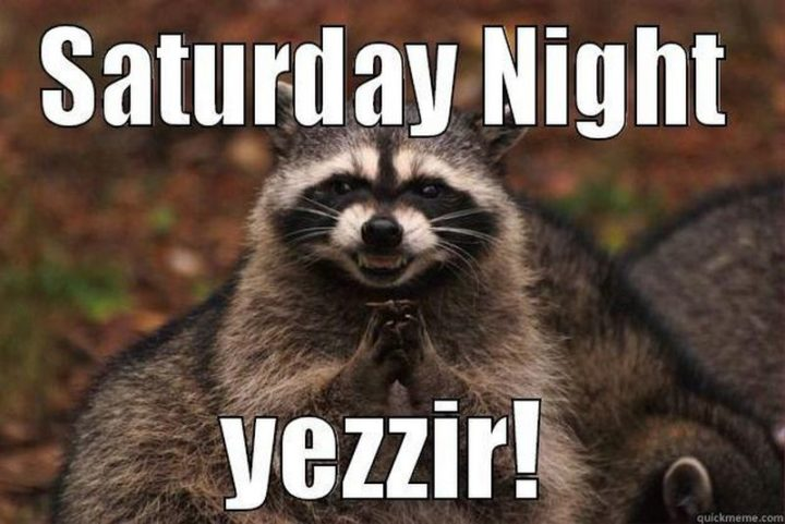 "101 Saturday Memes - ""Saturday night. Yessir!"""