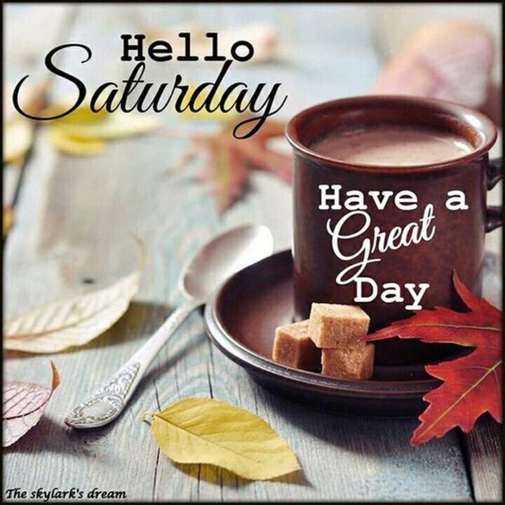 """59 Saturday Quotes - """"Hello, Saturday. Have a great day."""" - Unknown"""