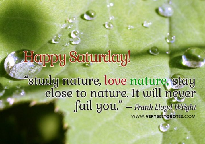 """59 Saturday Quotes - """"Happy Saturday! Study nature, love nature, stay close to nature. It will never fail you."""" - Frank Lloyd Wright"""