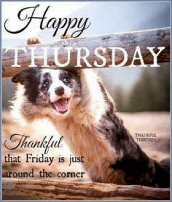"""101 Thursday Memes - """"Happy Thursday. Thankful that Friday is just around the corner."""""""