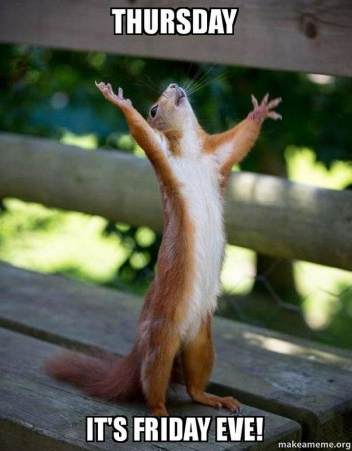 "101 Thursday Memes - ""Thursday. It's Friday eve!"""