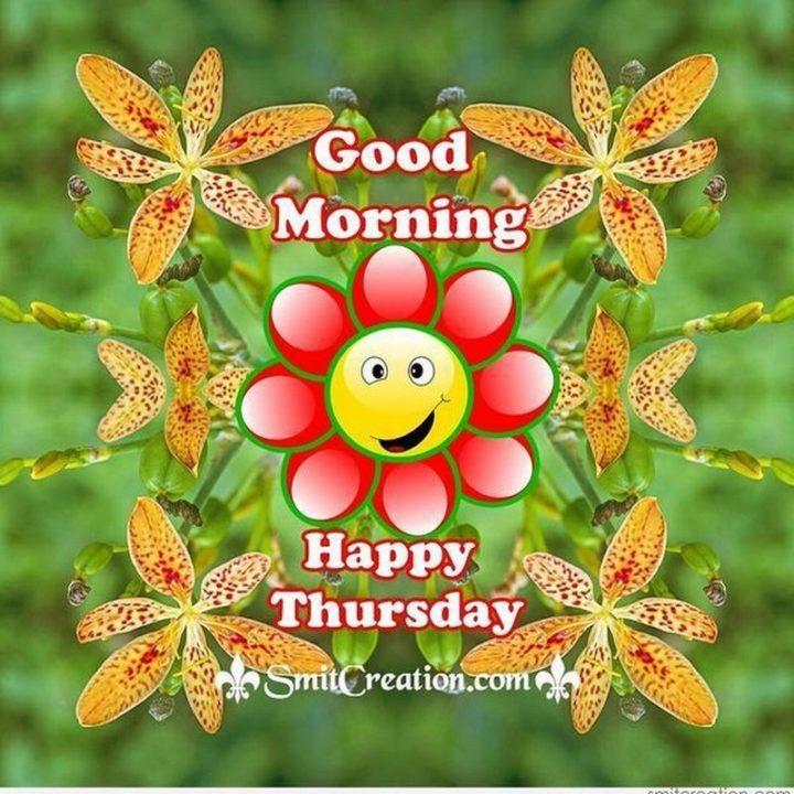 """101 Thursday Memes - """"Good morning. Happy Thursday."""""""