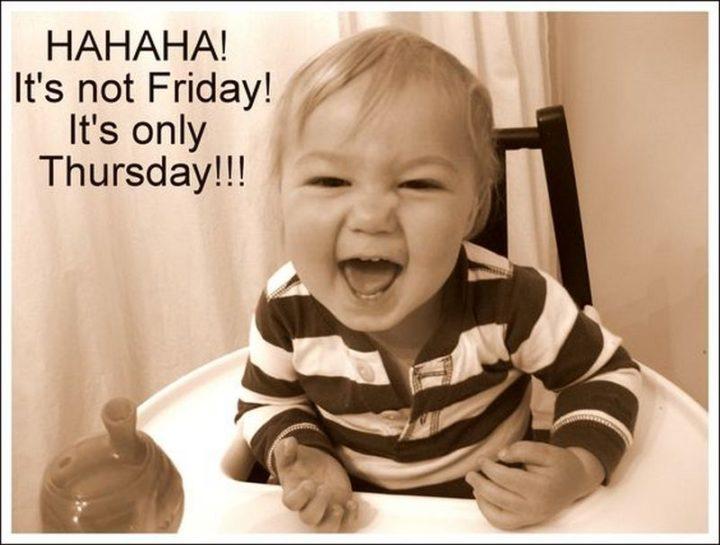 "101 Thursday Memes - ""Hahaha! It's not Friday! It's only Thursday!!!"""