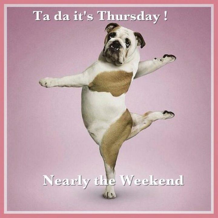 """Ta-da it's Thursday! Nearly the weekend."""