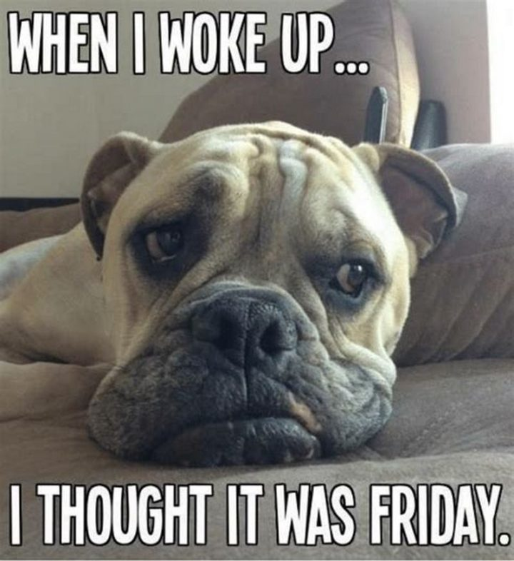 """""""When I woke up...I thought it was Friday."""""""