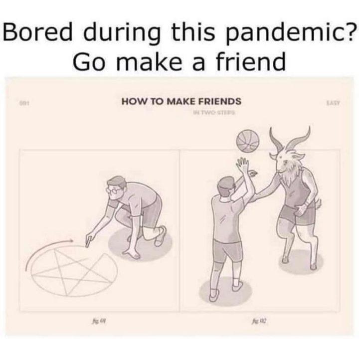 "53 Coronavirus Memes - ""Bored during this pandemic? Go make a friend."""