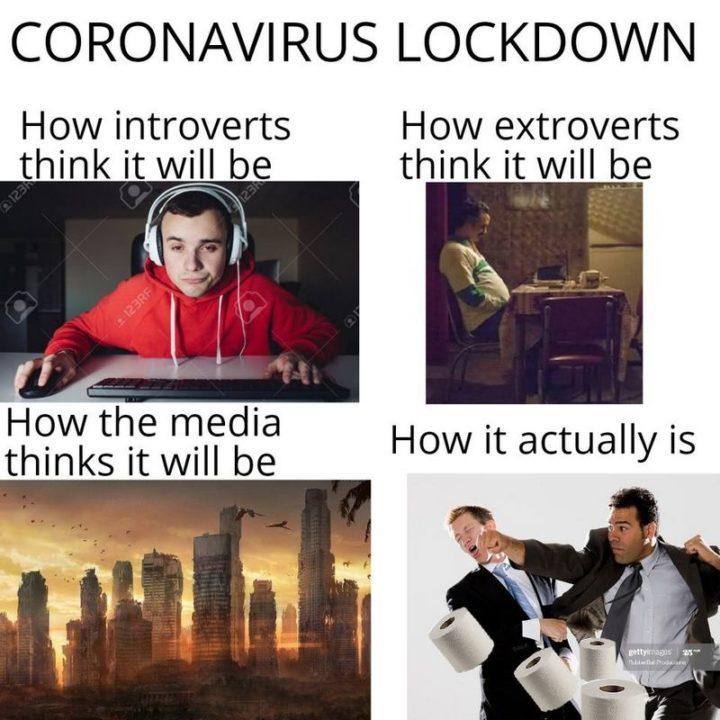 "53 Coronavirus Memes - ""Coronavirus lockdown: How introverts think it will be. How extroverts think it will be. How the media thinks it will be. How it actually is."""