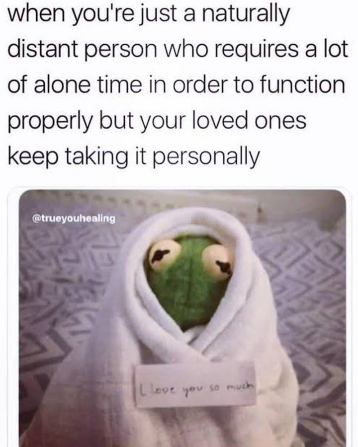 """75 Introvert Memes - """"When you're just a naturally distant person who requires a lot of alone time in order to function properly but your loved ones keep taking it personally: I love you so much."""""""