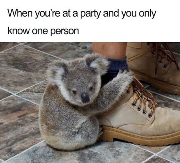 """75 Introvert Memes - """"When you're at a party and you only know one person."""""""