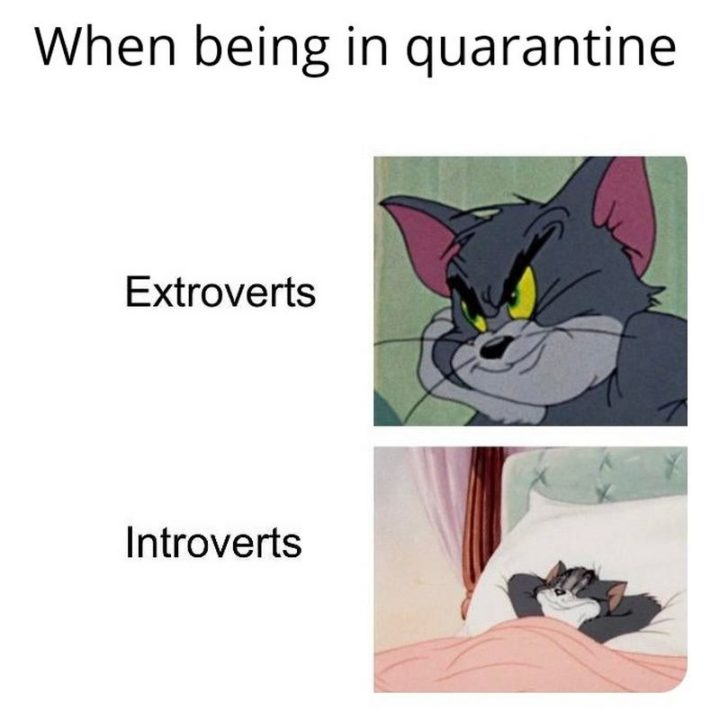 """75 Introvert Memes - """"When being in quarantine: Extroverts vs Introverts."""""""