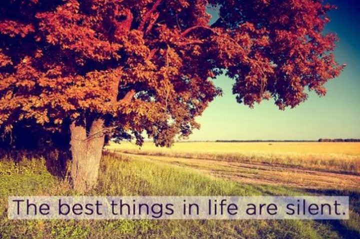 """75 Introvert Memes - """"The best things in life are silent."""""""