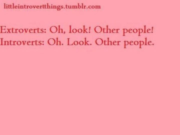 """75 Introvert Memes - """"Extroverts: Oh, look! Other people! Introverts: Oh. Look. Other people."""""""