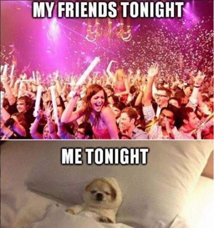 "75 Introvert Memes - ""My friends tonight. Me tonight."""