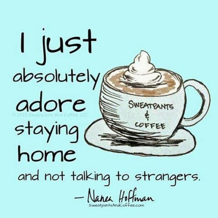"""75 Introvert Memes - """"I just absolutely adore staying home and not talking to strangers."""""""
