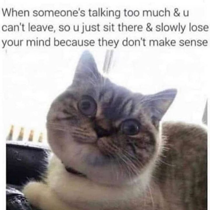 """75 Introvert Memes - """"When someone's talking too much and u can't leave, so u just sit there and slowly lose your mind because they don't make sense."""""""