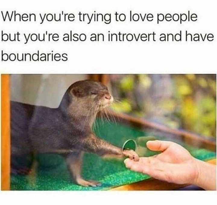 """75 Introvert Memes - """"When you're trying to love people but you're also an introvert and have boundaries."""""""