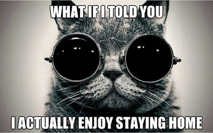 """75 Introvert Memes - """"What if I told you I actually enjoy staying home."""""""