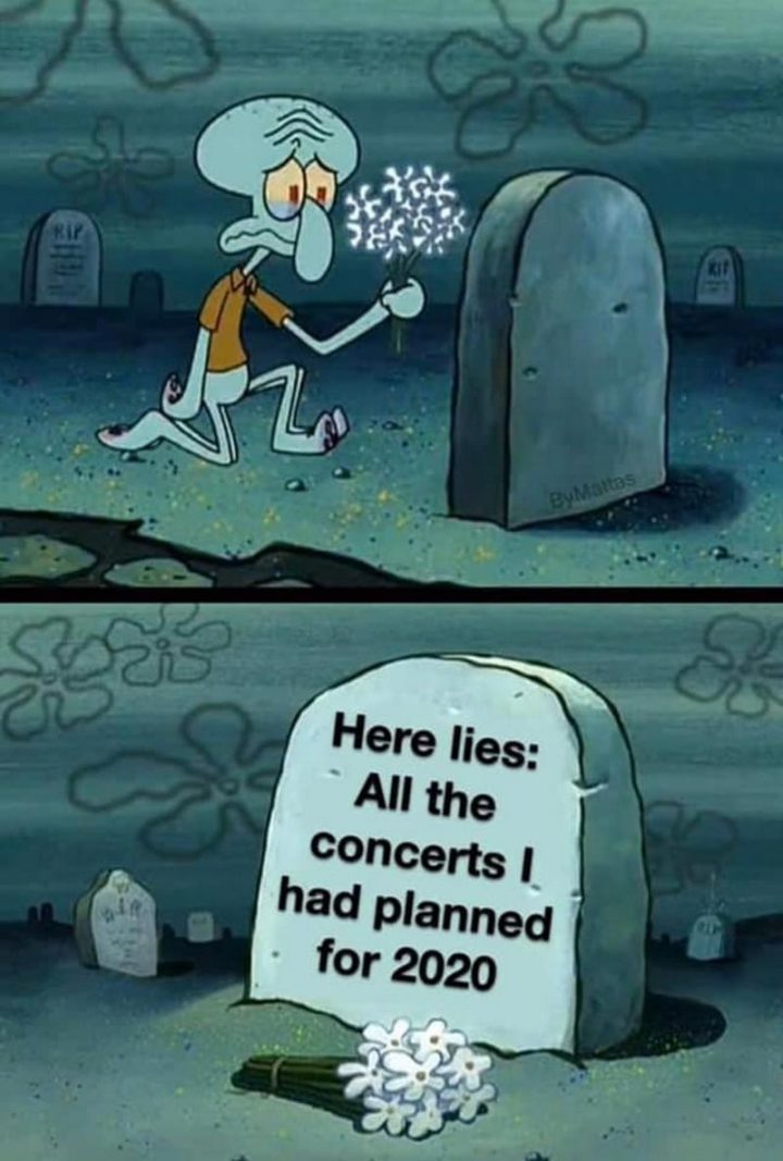 """53 Sad Memes - """"Here lies: All the concerts I had planned for 2020."""""""