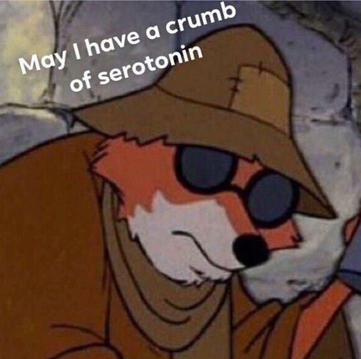 """53 Sad Memes - """"May I have a crumb of serotonin."""""""