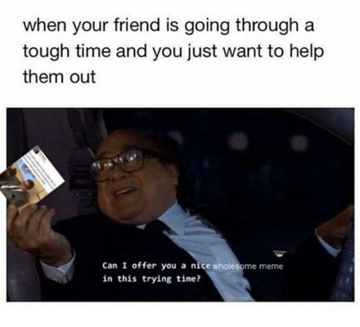 """53 Sad Memes - """"When your friend is going through a tough time and you just want to help them out. Can I offer you a nice wholesome meme in this trying time?"""""""
