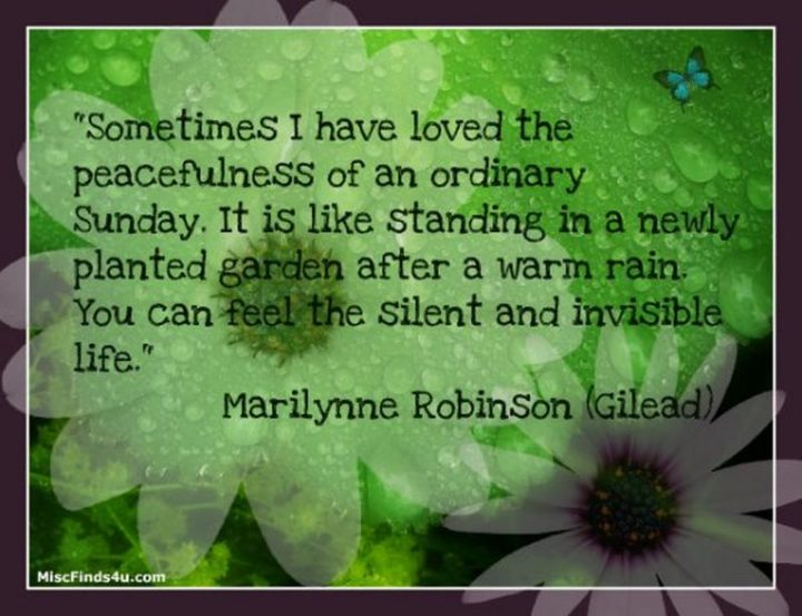 """47 Sunday Quotes - """"Sometimes I have loved the peacefulness of an ordinary Sunday. It is like standing in a newly planted garden after a warm rain. You can feel the silent and invisible life."""" - Marilynne Robinson"""