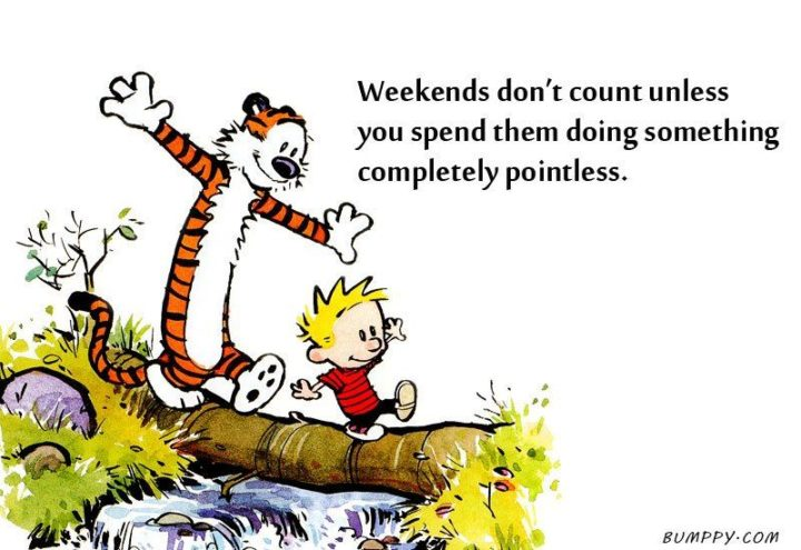 """47 Sunday Quotes - """"Weekends don't count unless you spend them doing something completely pointless."""" - Bill Watterson"""