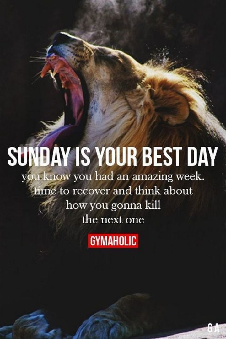 """47 Sunday Quotes - """"Sunday is the best day. You know you had an amazing week. Time to recover and think how you gonna kill the next one."""" - Unknown"""