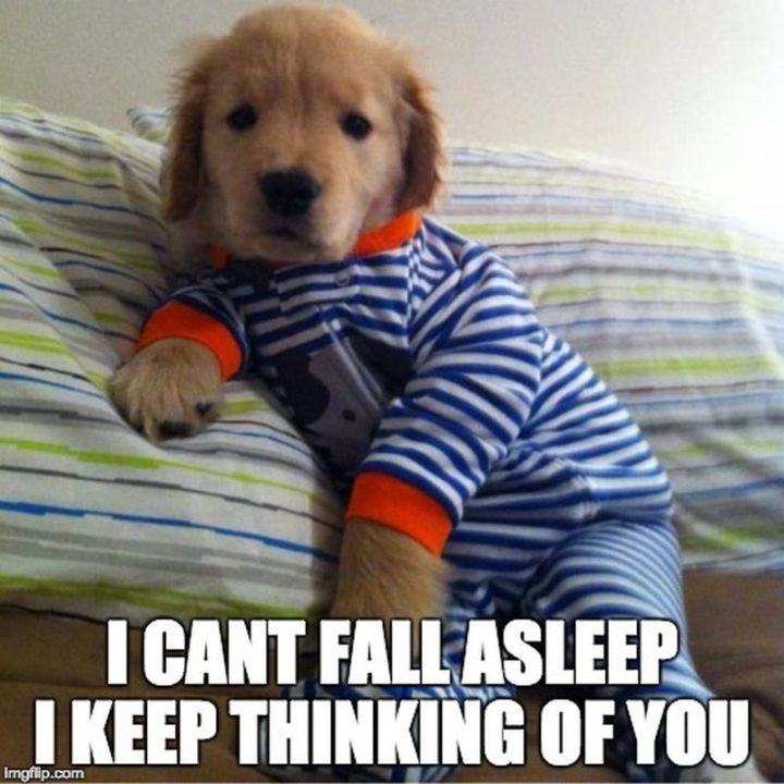 """77 """"Thinking of You"""" Memes - """"I can't fall asleep. I keep thinking of you."""""""