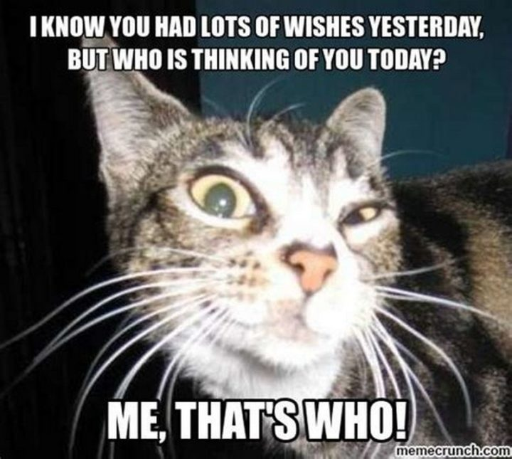 """77 """"Thinking of You"""" Memes - """"I know you had lots of birthday wishes yesterday, but who is thinking of you today? Me, that's who!"""""""