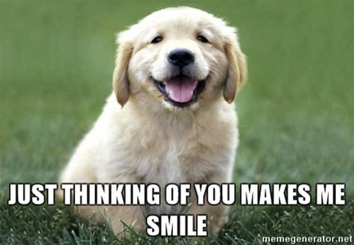 """77 """"Thinking of You"""" Memes - """"Just thinking of you makes me smile."""""""