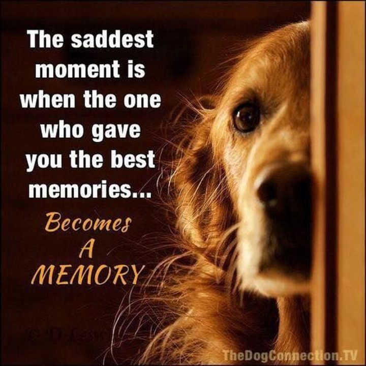 """77 """"Thinking of You"""" Memes - """"The saddest moment is when the one who gave you the best memories...Becomes a memory."""""""