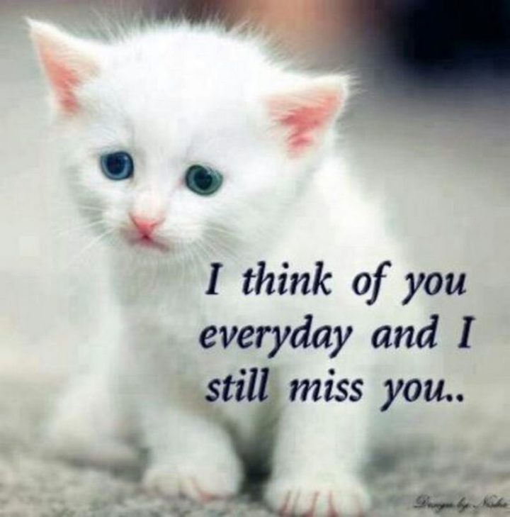"""77 """"Thinking of You"""" Memes - """"I think of you every day and I still miss you..."""""""