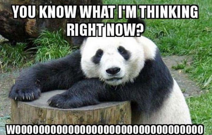"""77 """"Thinking of You"""" Memes - """"You know what I'm thinking right now? Woo."""""""