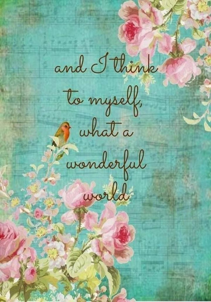 """""""And I think to myself, what a wonderful world."""" - Louis Armstrong"""