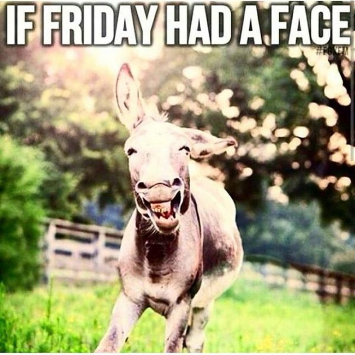 """55 """"Almost Friday"""" Memes - """"If Friday had a face."""""""