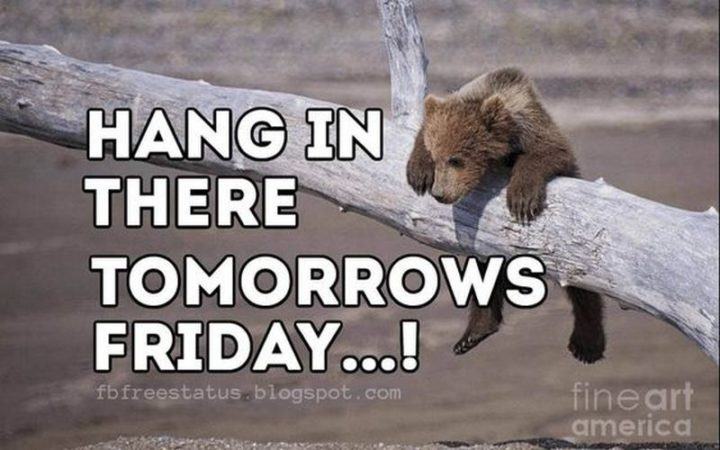 """55 """"Almost Friday"""" Memes - """"Hang in there, tomorrow's Friday...!"""
