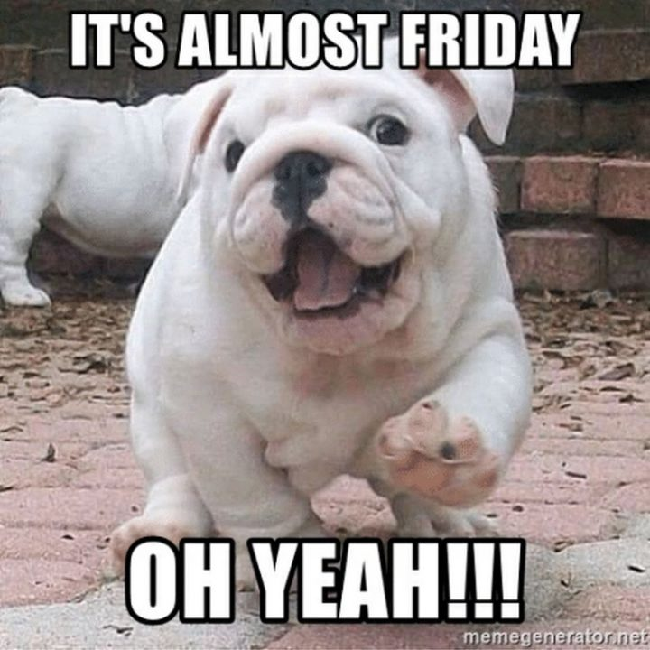 """55 """"Almost Friday"""" Memes - """"It's almost Friday, oh yeah!!!"""""""