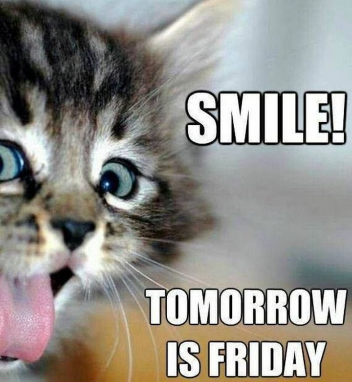 """55 """"Almost Friday"""" Memes - """"Smile! Tomorrow is Friday."""""""