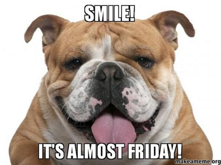 """55 """"Almost Friday"""" Memes - """"Smile! It's almost Friday!"""""""